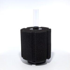 Sponge-Filter-Deferred-L