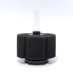 Sponge-Filter-Deferred-M
