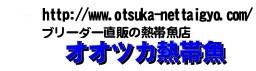 エンゼルフィッシュ、ラミレジィ、アピストグラマ等の通販専門店 オオツカ熱帯魚